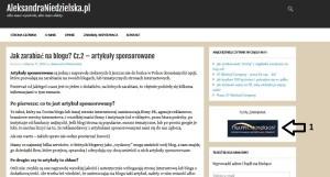blogowanie1